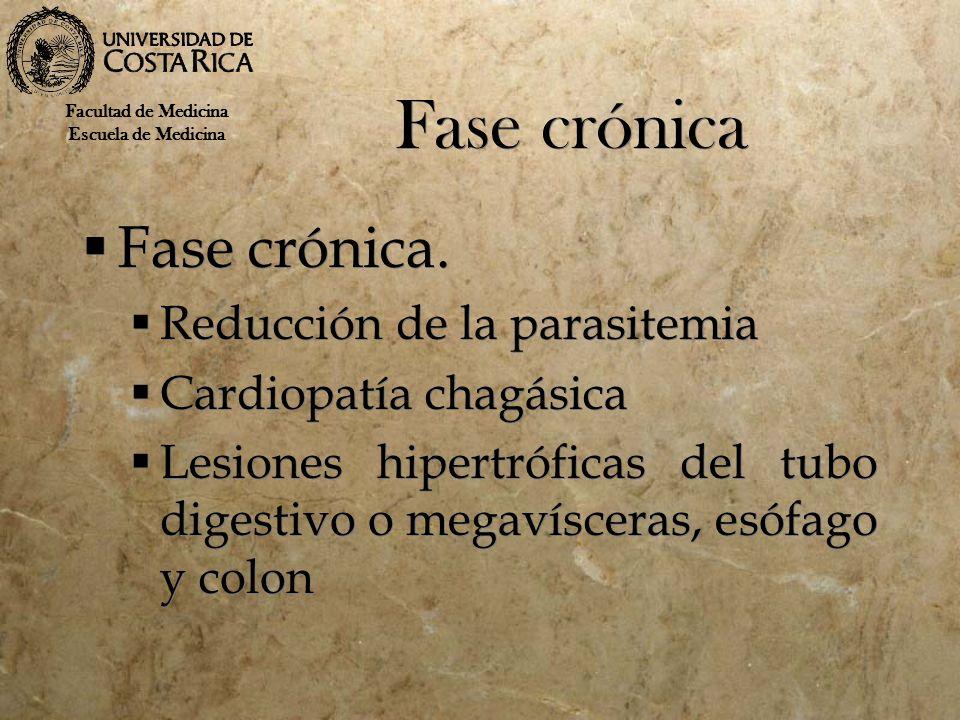 Fase crónica Fase crónica. Reducción de la parasitemia