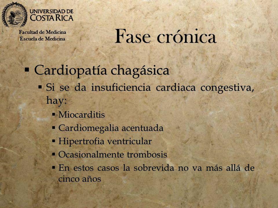 Fase crónica Cardiopatía chagásica