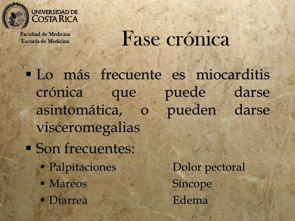 Fase crónica Facultad de Medicina. Escuela de Medicina.