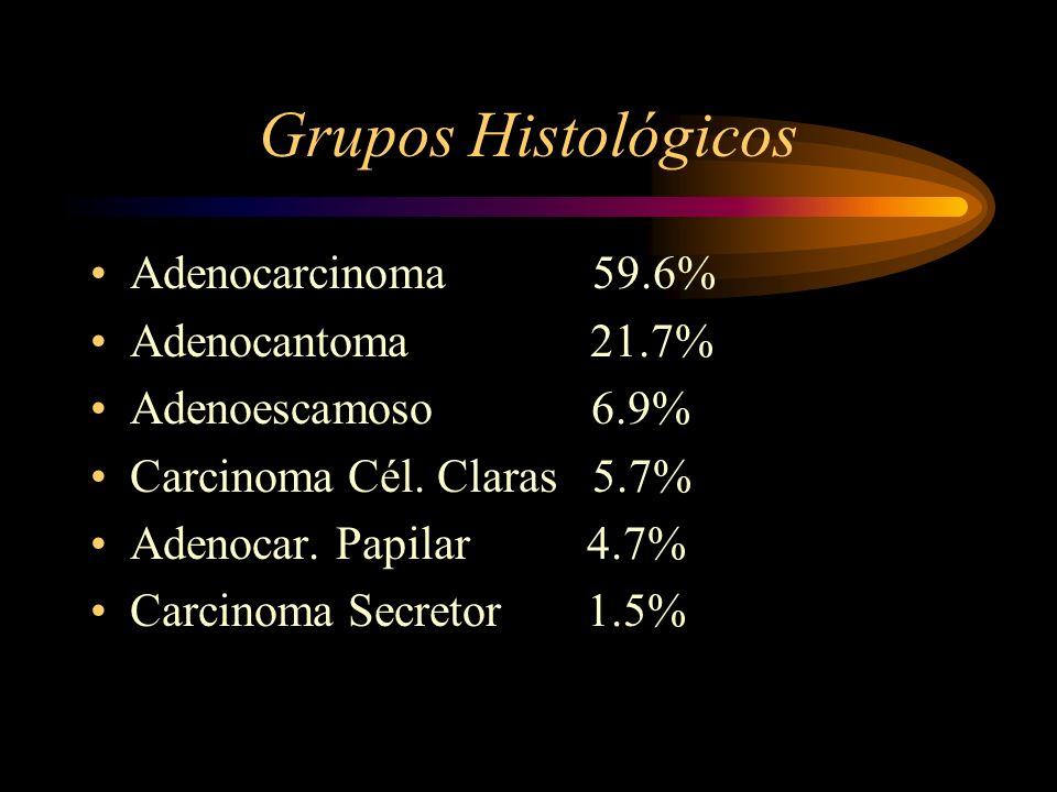 Grupos Histológicos Adenocarcinoma 59.6% Adenocantoma 21.7%