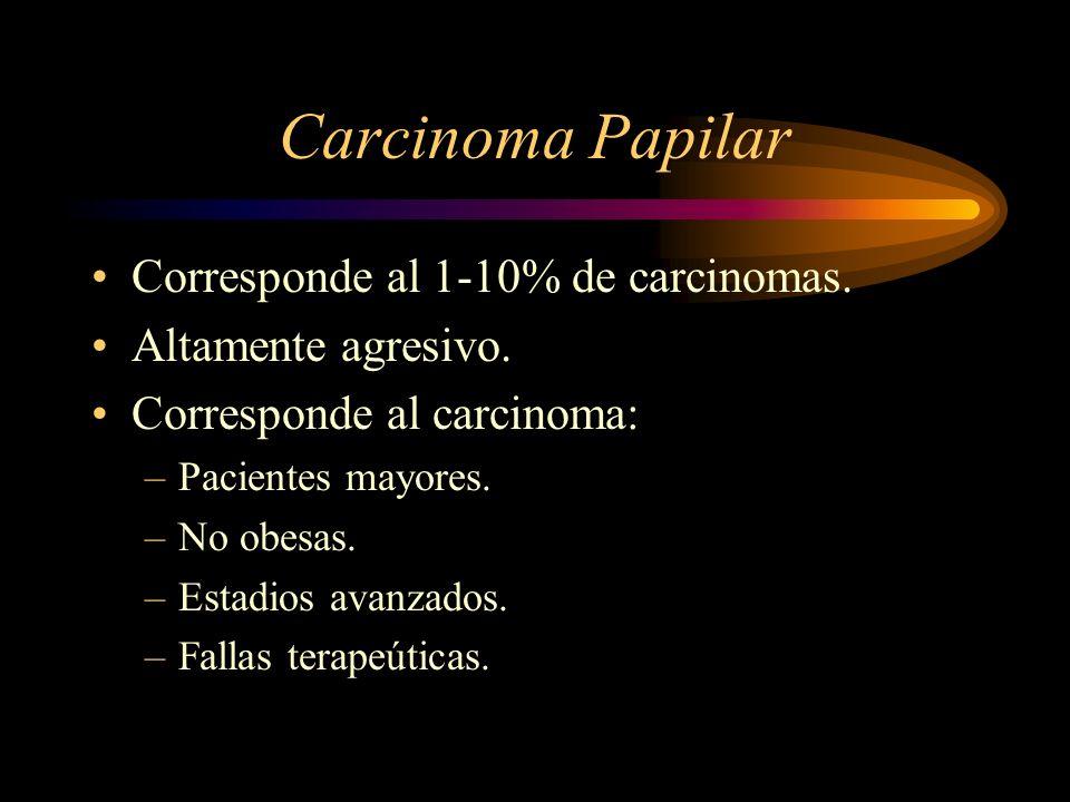 Carcinoma Papilar Corresponde al 1-10% de carcinomas.
