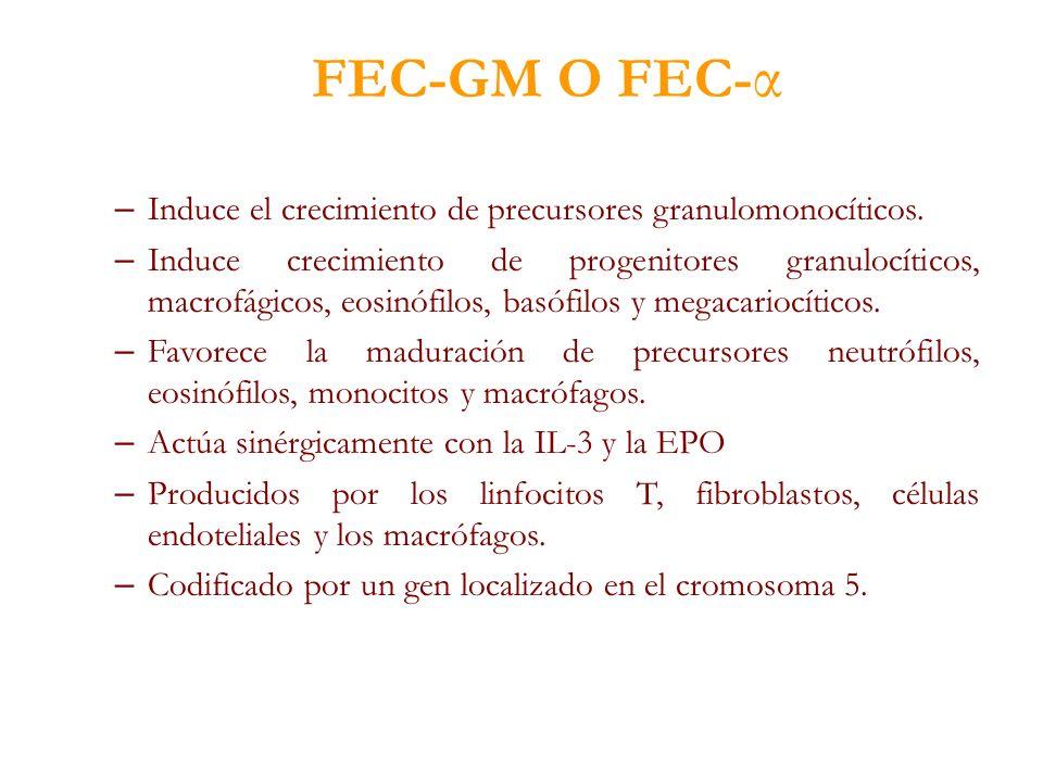 FEC-GM O FEC-α Induce el crecimiento de precursores granulomonocíticos.