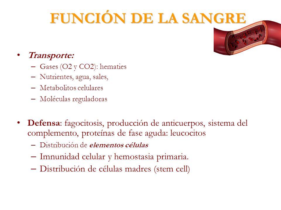 FUNCIÓN DE LA SANGRE Transporte: