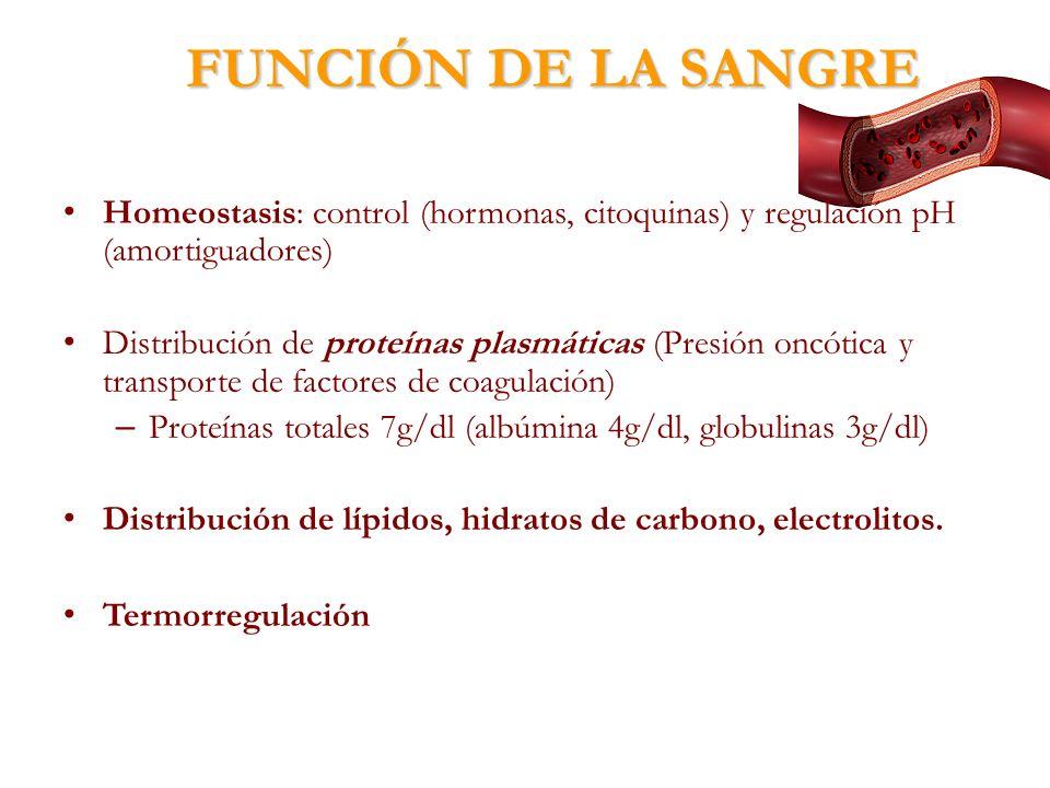 FUNCIÓN DE LA SANGRE Homeostasis: control (hormonas, citoquinas) y regulación pH (amortiguadores)
