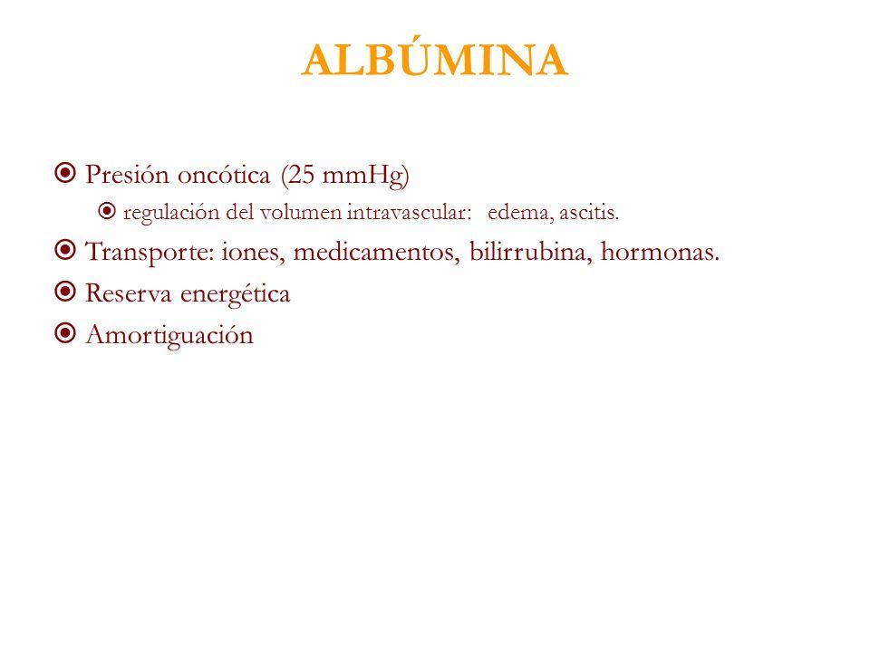 ALBÚMINA Presión oncótica (25 mmHg)