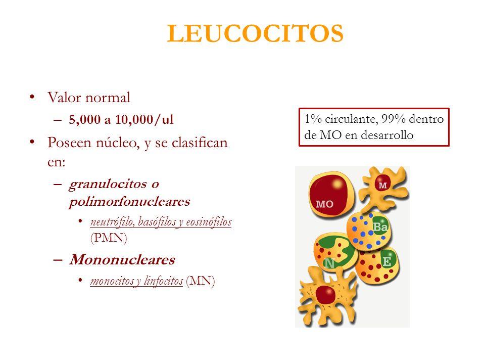 LEUCOCITOS Valor normal Poseen núcleo, y se clasifican en: