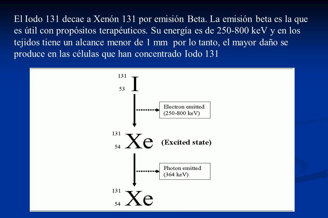 El Iodo 131 decae a Xenón 131 por emisión Beta
