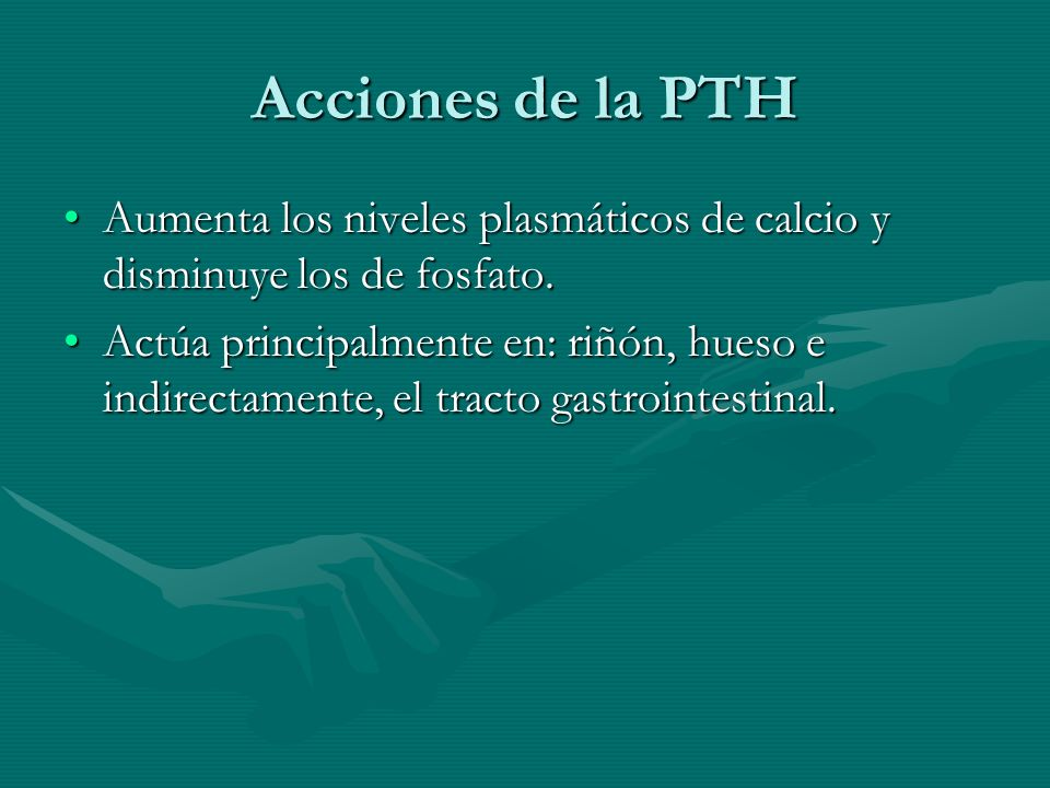 Acciones de la PTHAumenta los niveles plasmáticos de calcio y disminuye los de fosfato.