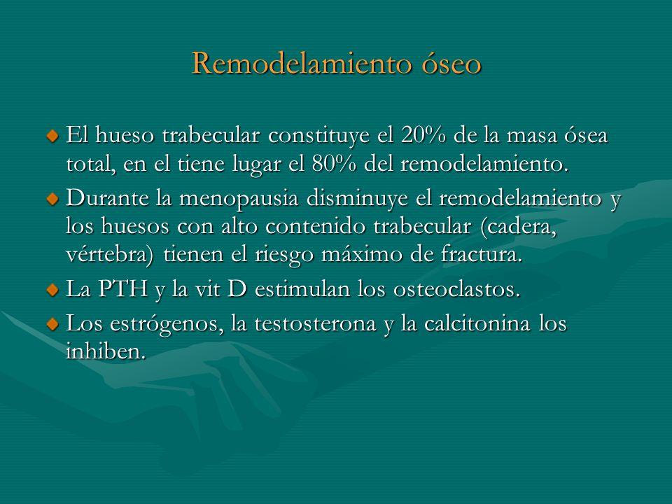 Remodelamiento óseo El hueso trabecular constituye el 20% de la masa ósea total, en el tiene lugar el 80% del remodelamiento.