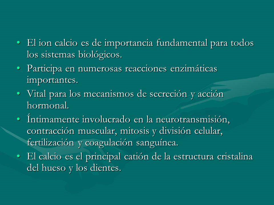 El ion calcio es de importancia fundamental para todos los sistemas biológicos.