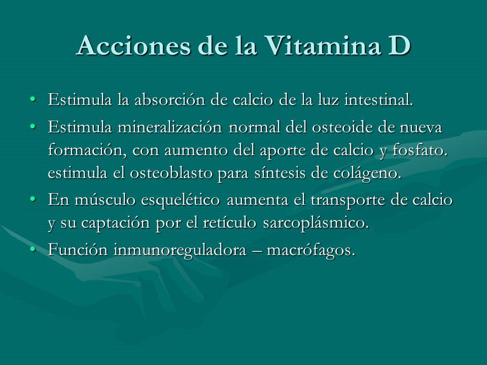 Acciones de la Vitamina D