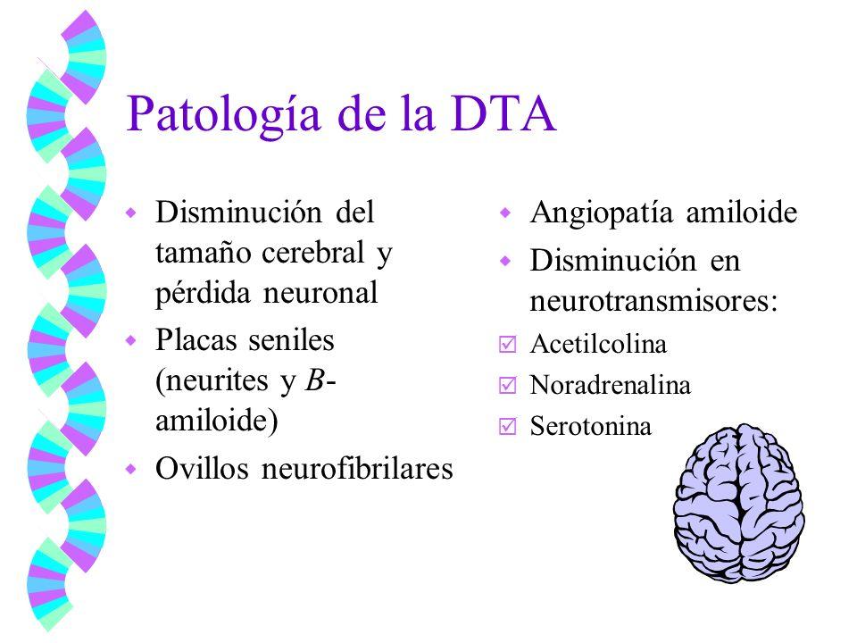Patología de la DTA Disminución del tamaño cerebral y pérdida neuronal