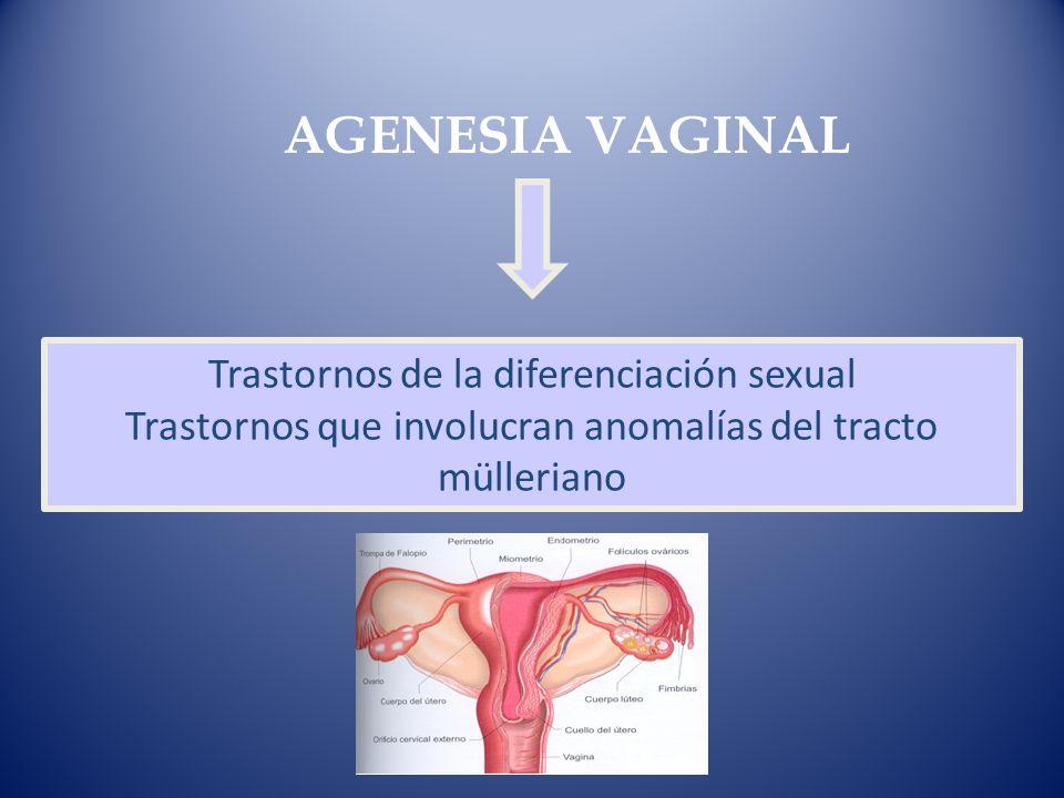 AGENESIA VAGINALTrastornos de la diferenciación sexual Trastornos que involucran anomalías del tracto mülleriano.