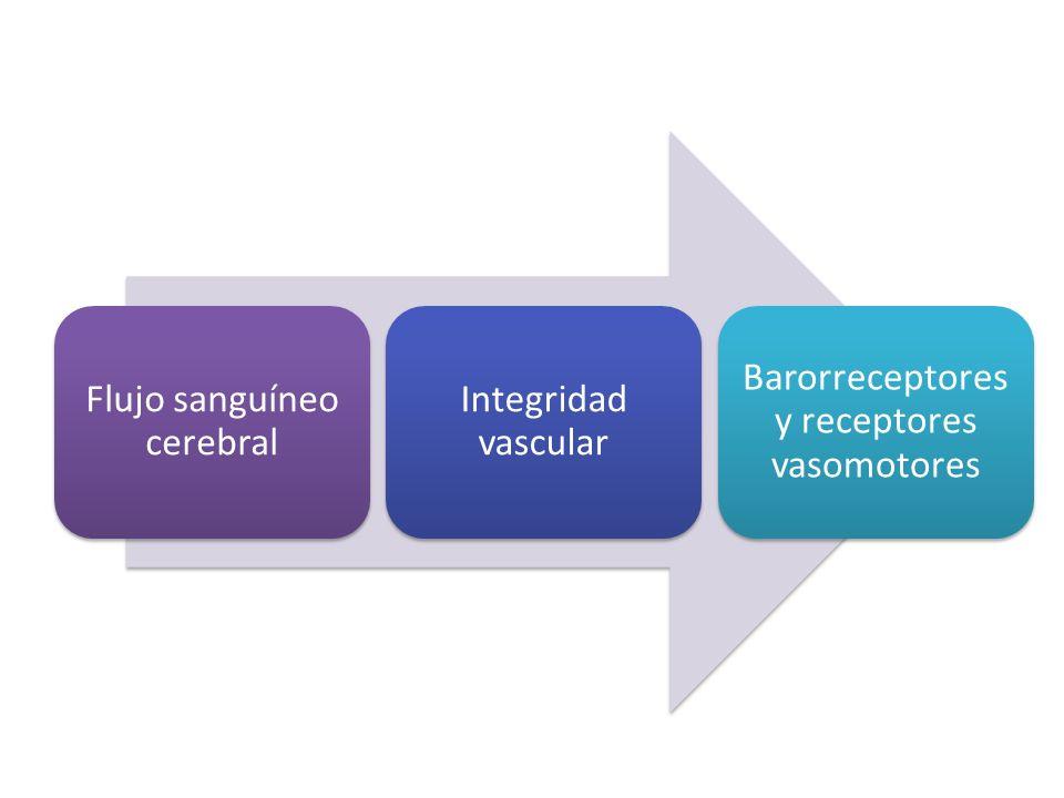 Flujo sanguíneo cerebral Integridad vascular