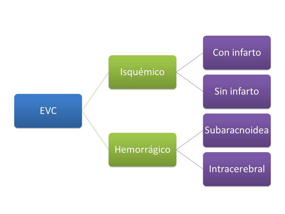 EVC Isquémico Con infarto Sin infarto Hemorrágico Subaracnoidea Intracerebral
