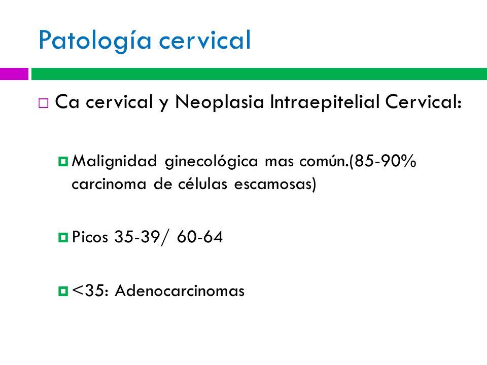Patología cervical Ca cervical y Neoplasia Intraepitelial Cervical:
