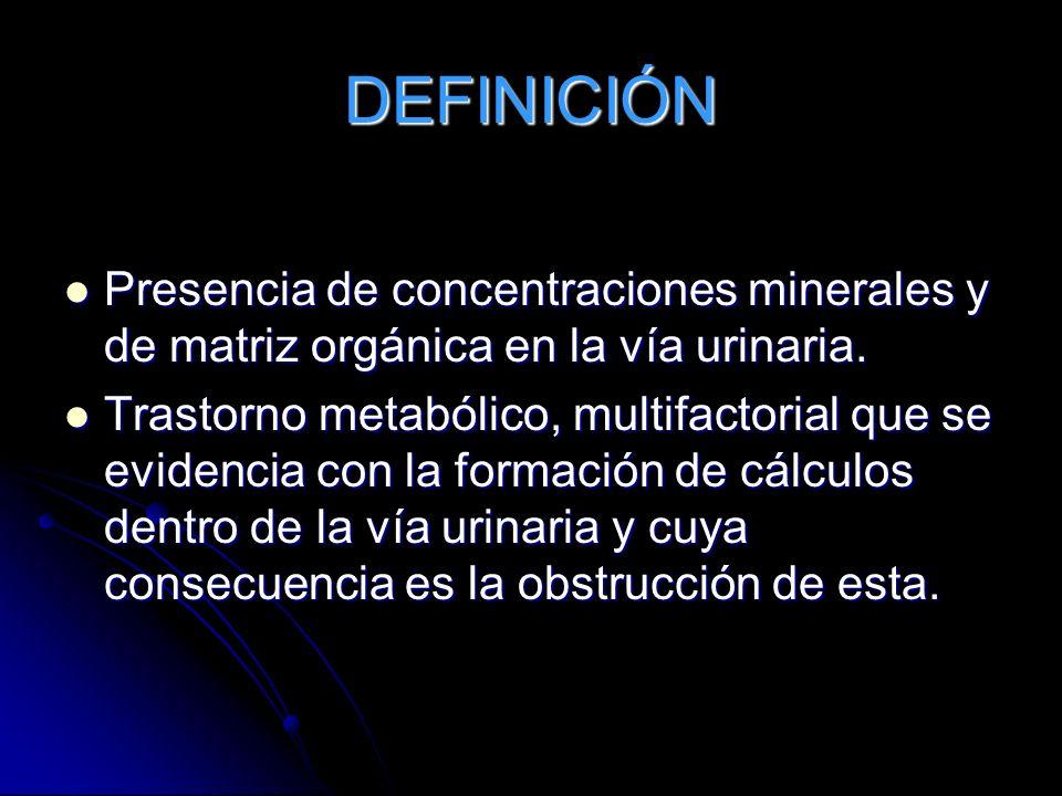 DEFINICIÓN Presencia de concentraciones minerales y de matriz orgánica en la vía urinaria.