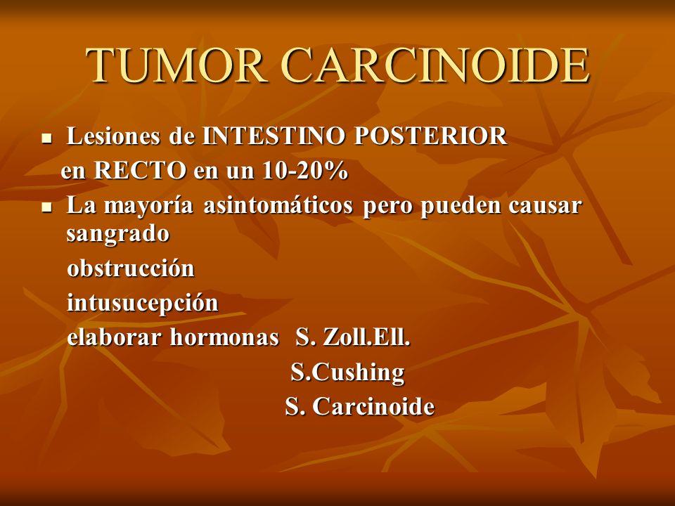 TUMOR CARCINOIDE Lesiones de INTESTINO POSTERIOR en RECTO en un 10-20%