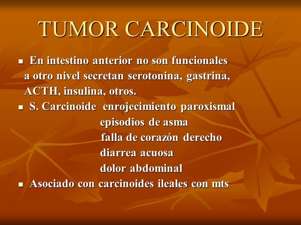 TUMOR CARCINOIDE En intestino anterior no son funcionales