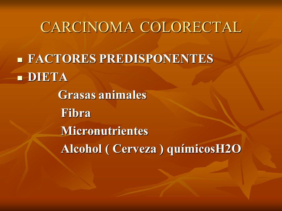 CARCINOMA COLORECTAL FACTORES PREDISPONENTES DIETA Grasas animales