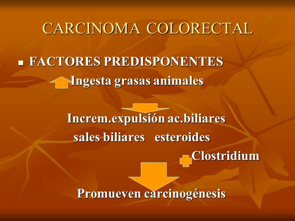 CARCINOMA COLORECTAL FACTORES PREDISPONENTES Ingesta grasas animales