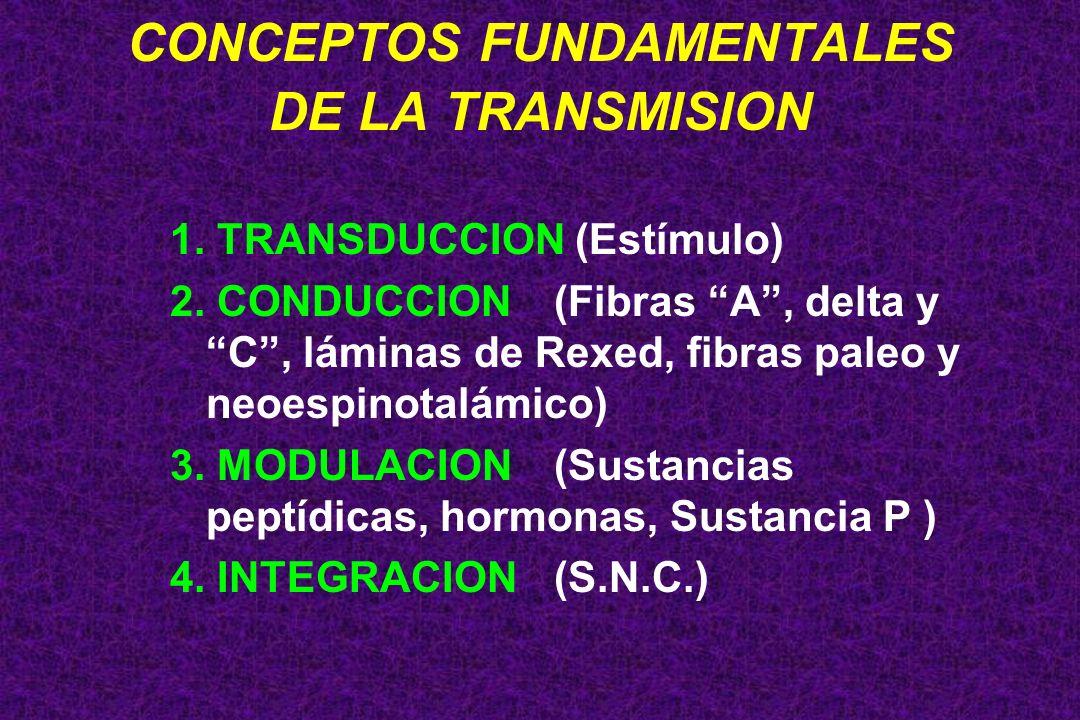 CONCEPTOS FUNDAMENTALES DE LA TRANSMISION