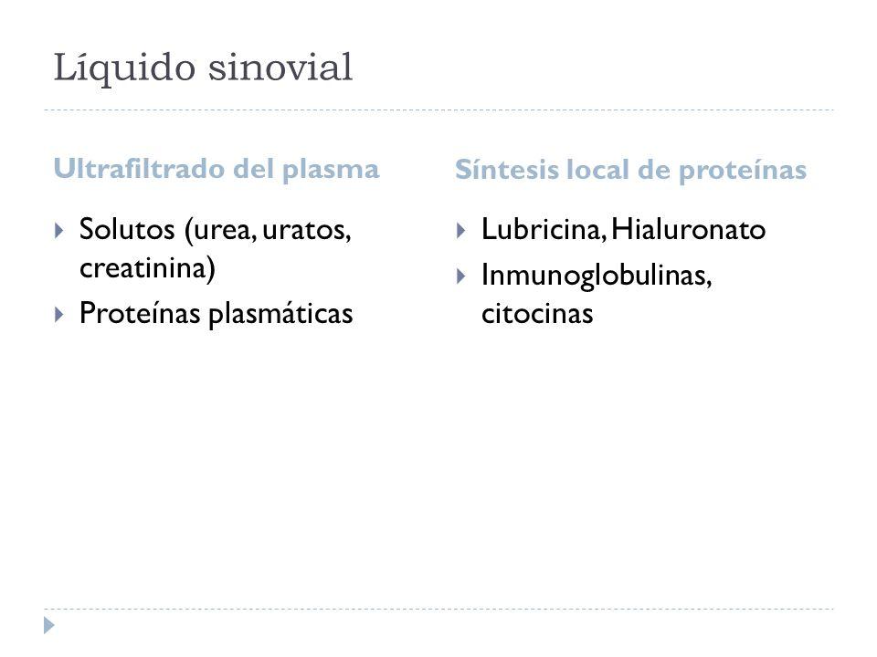 Líquido sinovial Solutos (urea, uratos, creatinina)