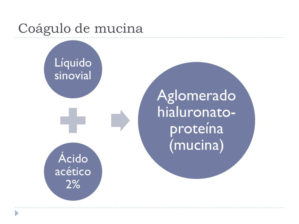 Aglomerado hialuronato-proteína (mucina)