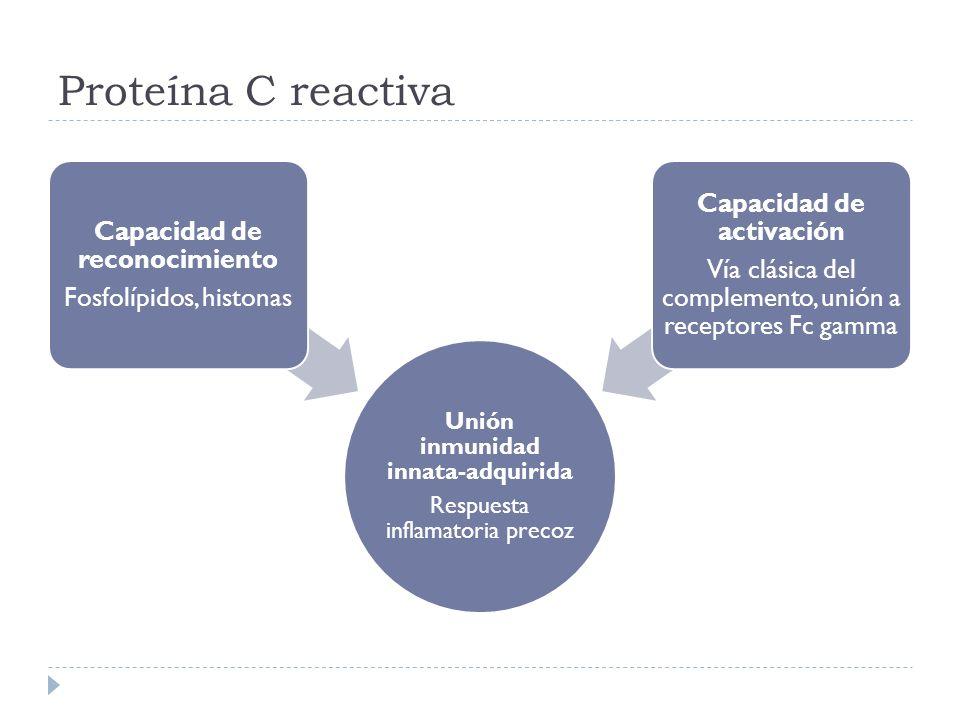 Proteína C reactiva Unión inmunidad innata-adquirida