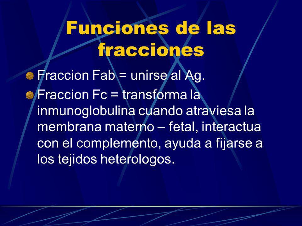 Funciones de las fracciones