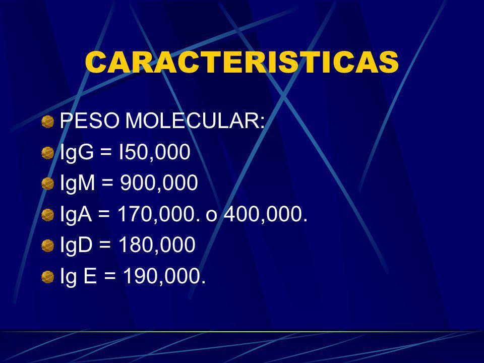 CARACTERISTICAS PESO MOLECULAR: IgG = I50,000 IgM = 900,000