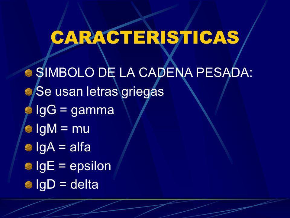 CARACTERISTICAS SIMBOLO DE LA CADENA PESADA: Se usan letras griegas