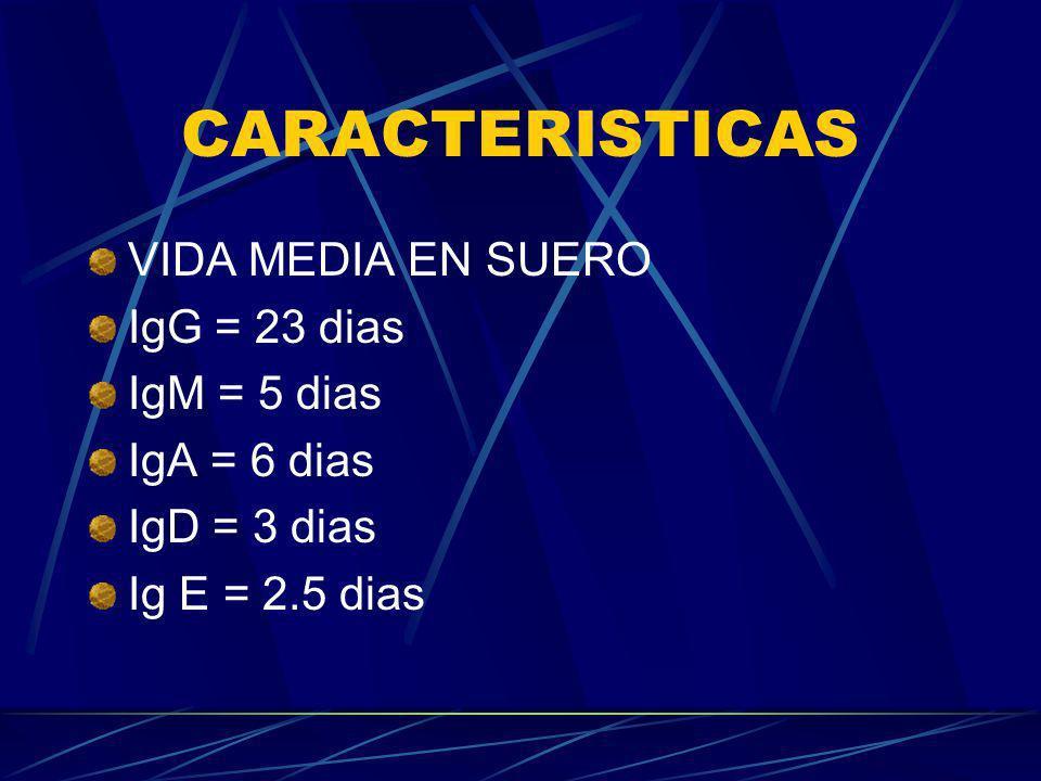 CARACTERISTICAS VIDA MEDIA EN SUERO IgG = 23 dias IgM = 5 dias