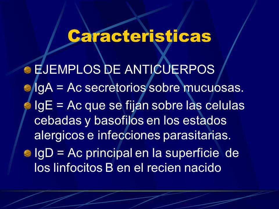 Caracteristicas EJEMPLOS DE ANTICUERPOS