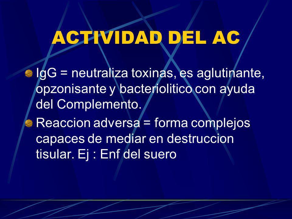 ACTIVIDAD DEL AC IgG = neutraliza toxinas, es aglutinante, opzonisante y bacteriolitico con ayuda del Complemento.