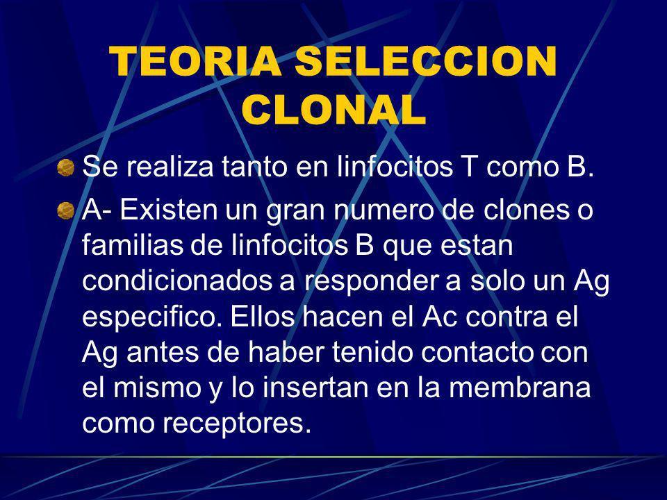TEORIA SELECCION CLONAL