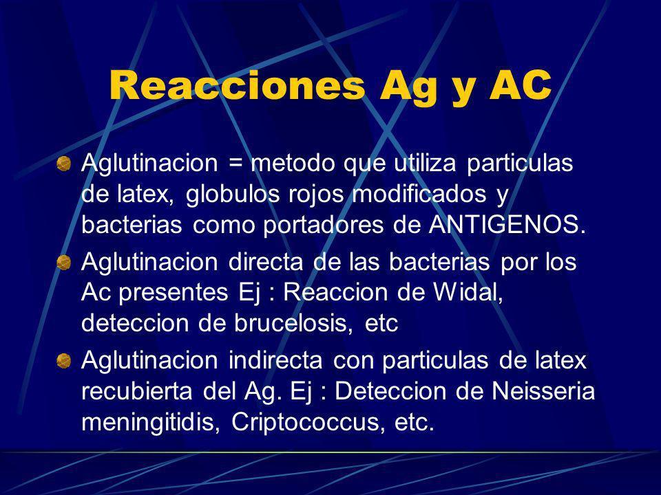 Reacciones Ag y ACAglutinacion = metodo que utiliza particulas de latex, globulos rojos modificados y bacterias como portadores de ANTIGENOS.