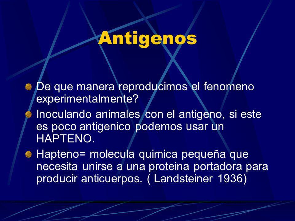 Antigenos De que manera reproducimos el fenomeno experimentalmente