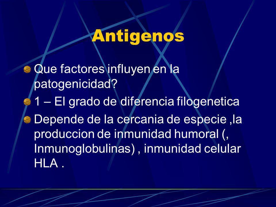 Antigenos Que factores influyen en la patogenicidad