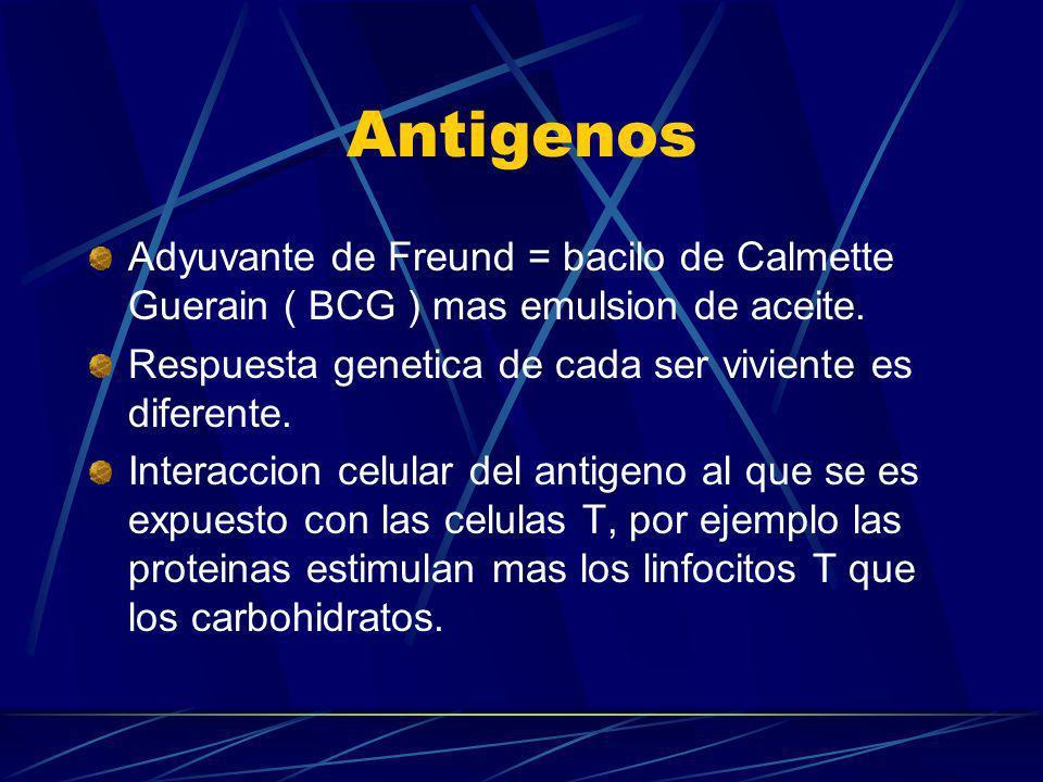 Antigenos Adyuvante de Freund = bacilo de Calmette Guerain ( BCG ) mas emulsion de aceite. Respuesta genetica de cada ser viviente es diferente.