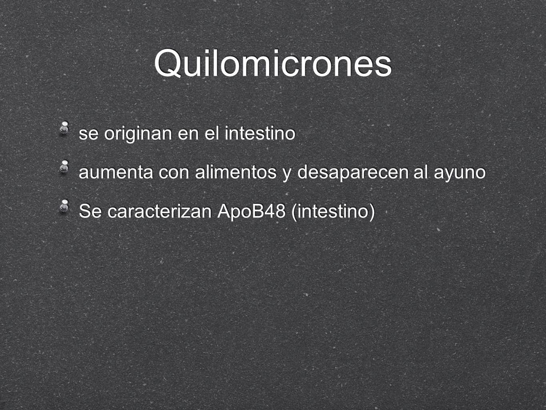 Quilomicrones se originan en el intestino