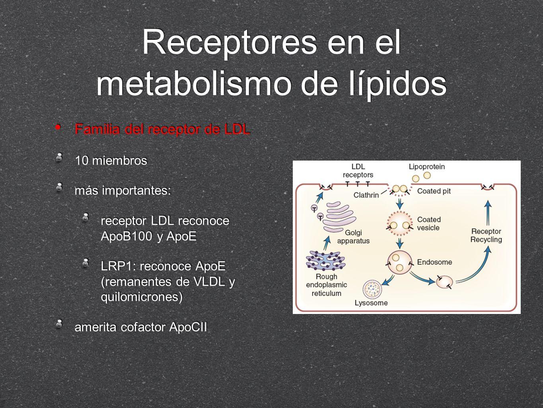 Receptores en el metabolismo de lípidos