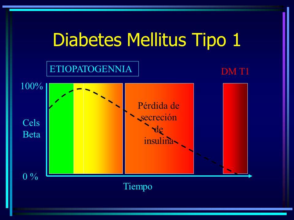 Diabetes Mellitus en Niños y Adolescentes - ppt descargar