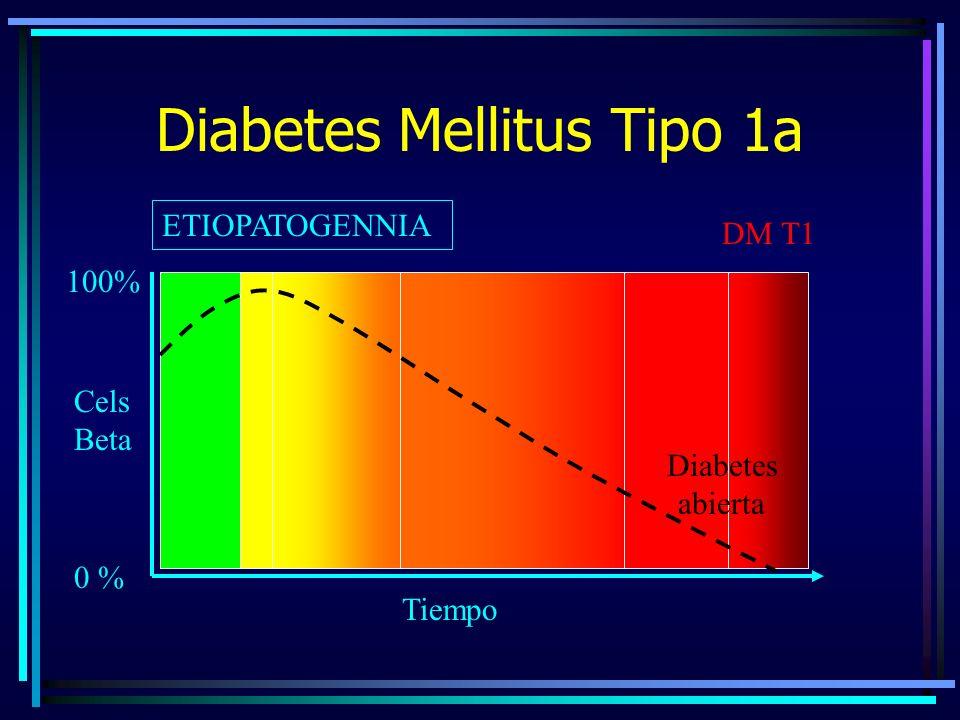 Diabetes Mellitus Tipo 1a