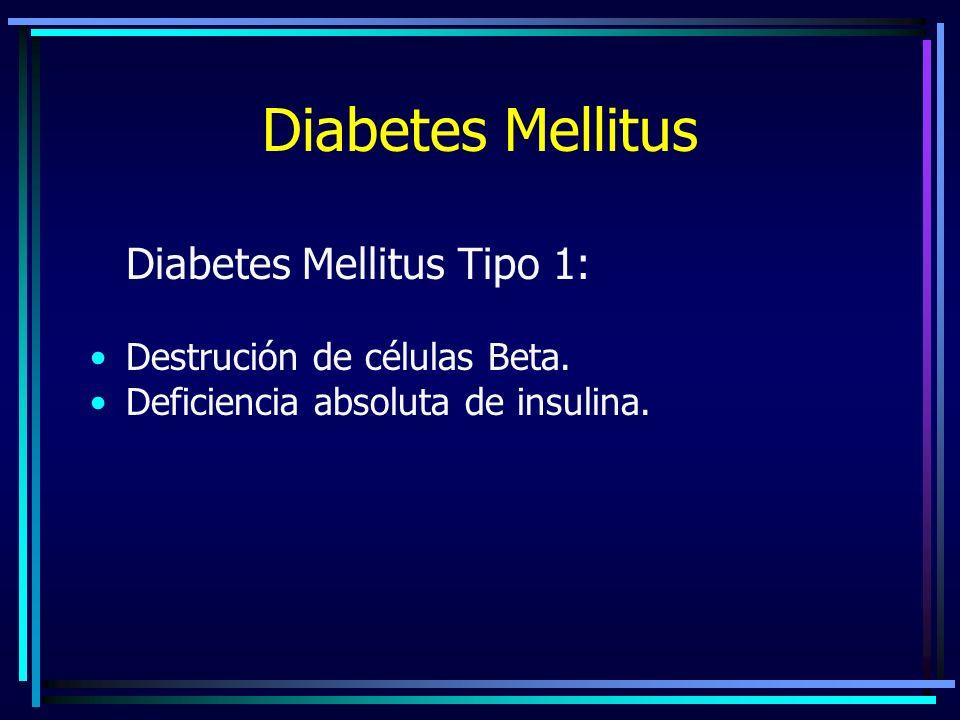 Diabetes Mellitus Diabetes Mellitus Tipo 1: