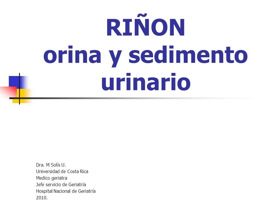 RIÑON orina y sedimento urinario