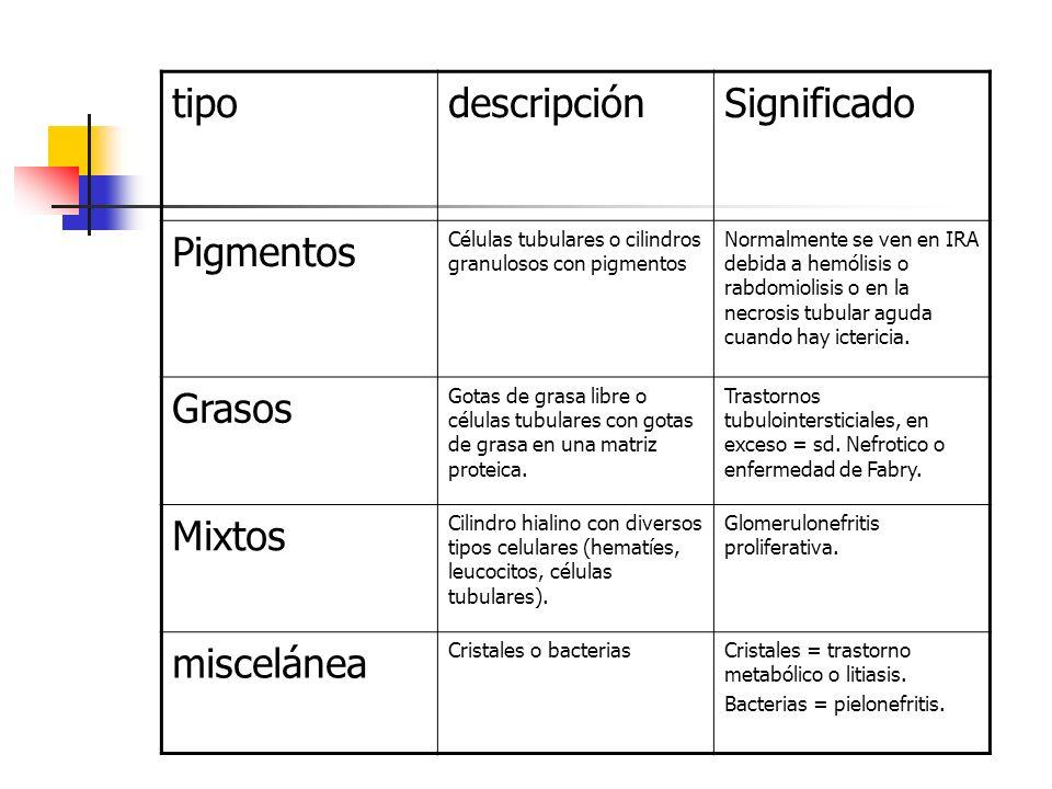 tipo descripción Significado Pigmentos Grasos Mixtos miscelánea