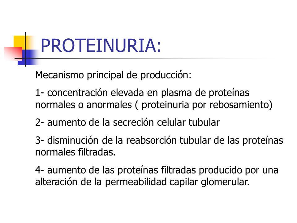PROTEINURIA: Mecanismo principal de producción: