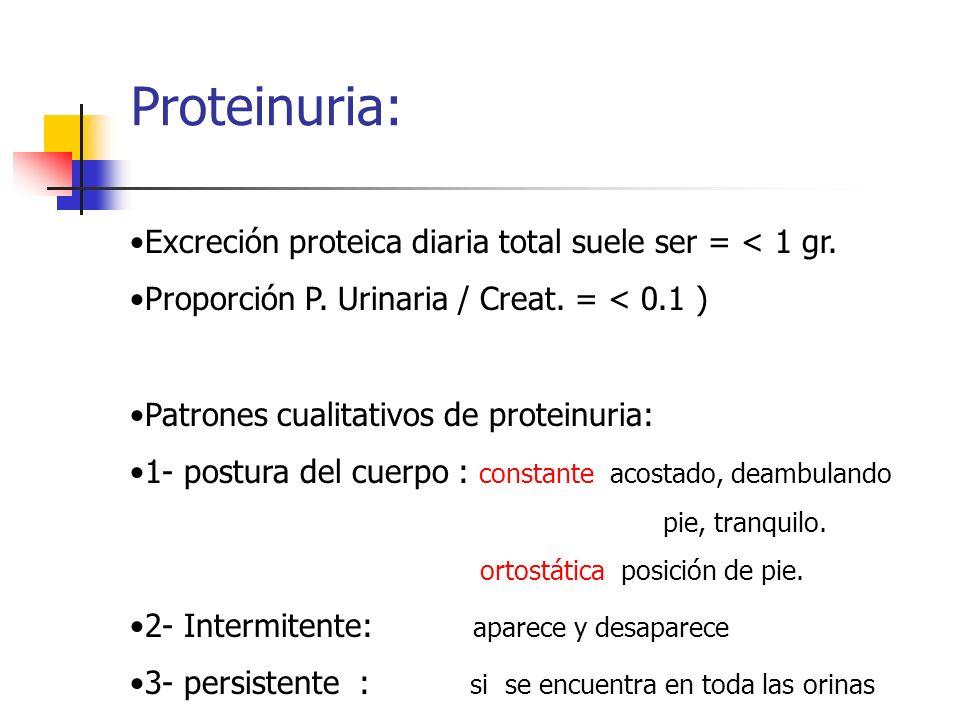 Proteinuria: Excreción proteica diaria total suele ser = < 1 gr.