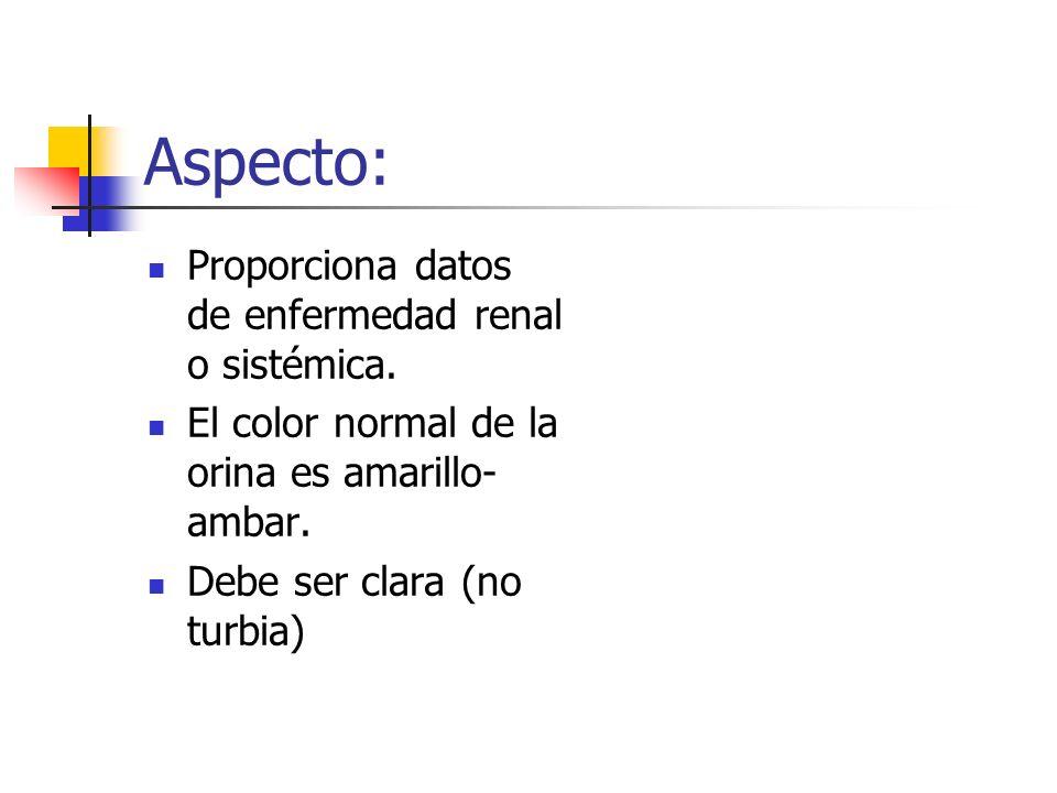 Aspecto: Proporciona datos de enfermedad renal o sistémica.